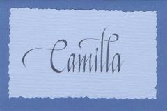 Kort - Camilla 2004