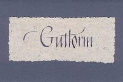 Kort - Guttorm 2004